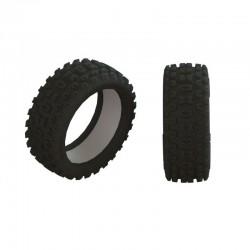 2HO Tire & Inserts (2)